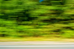 Photo of blurred green plants, motion background Stock Images