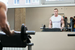 Photo Bodybuilder working out in the gym weights stock images