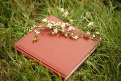 Photo book on the grass. A leather photobook on a grass with a branch of blooming cherry stock image