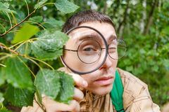 Photo of botanist man with magnifying glass. In summer forest Royalty Free Stock Photos