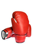 Photo of a boxing glove. Isolated on white Stock Image