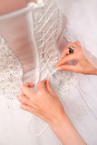 Photo of bride dressing white gown Stock Images