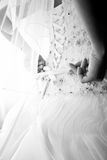 Photo of bride tying corset on wedding dress Royalty Free Stock Photography