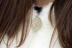 Photo of brooch on woman's fur coat Stock Photography