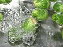 Brussels sprout washing. In the photo is a Brussels sprout under a stream of water Royalty Free Stock Images