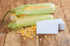 Photo of business cards with corn Royalty Free Stock Photography