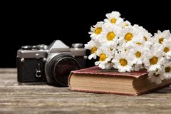 Photo camera, daisies and a book Stock Image