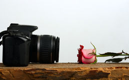 Photo camera and rose lie against each other Stock Image