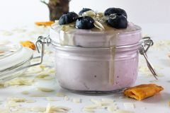 In this photo we can see a handmade blueberry yogurt with blueberries, almonds and honey. Decorated around with dry mango and royalty free stock image