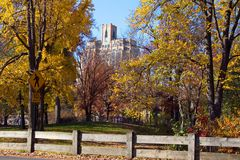 Central Park in Manhattan on a Fall Day, NYC Stock Image