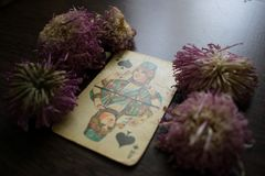 Photo of tarot card. Photo cards for fortune telling or playing. Old cards on a wooden background with flowers Stock Photo