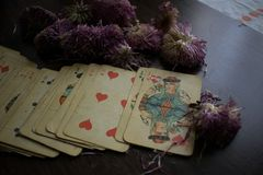 Photo of tarot card. Photo cards for fortune telling or playing. Old cards on a wooden background with flowers Royalty Free Stock Images