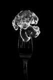 Photo of cauliflower on a fork. Photo of a cauliflower on a fork isolated on a black background. BW Royalty Free Stock Image
