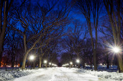 Photo of  Central Park at night Royalty Free Stock Images