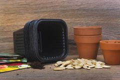 A photo of ceramic and black plastic flower pots for plants and seeds ready for planting. A photo of ceramic and black plastic flower pots for plants, pumpkin Stock Photography