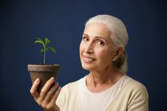 Photo of cheerful aged woman holding young plant in the spot, lo. Oking at camera, over dark blue background Royalty Free Stock Photos