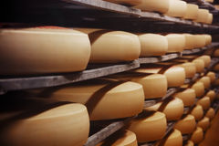 Photo of a cheese factory Royalty Free Stock Photo