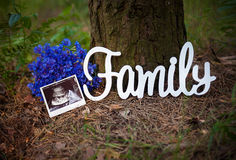 Photo a child in the picture ultrasound. Near a tree, with a bouquet and a sign that says family stock photo