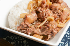 Duck meat and bamboo shoots Royalty Free Stock Photo