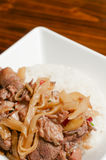 Duck meat and bamboo shoots Stock Images