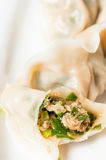 Dumplings. The photo is chinese food --dumplings royalty free stock photography