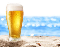 Photo of cold beer botle in the sand. Stock Photos
