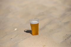Photo of cold beer in the hot sand. Drops of water on glass. Thi Stock Photos