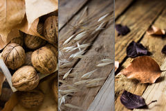 Photo collage autumn fall, dry brown red orange leaves, walnuts, plants on weathered wood background, tranquil. Cozy atmosphere Royalty Free Stock Images