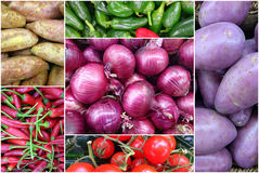 Photo Collage of fresh vegetables Stock Photos