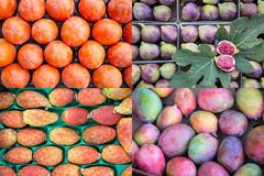 Photo collage of mango, pear cactus, figs, persimmon fruits. Royalty Free Stock Image