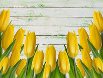 Yellow tulips on a wooden background Royalty Free Stock Photography