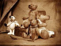 Teddy 5 royalty free stock photo