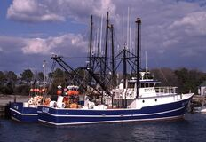 Colorful Commercial Fishing Boats in Ocean City