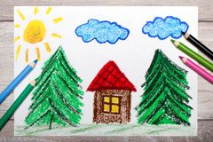 Colorful drawing: small house surrounded by coniferous trees.