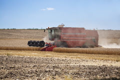 Photo of combine harvester that is harvesting wheat with dust straw in the air. Royalty Free Stock Images