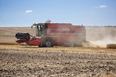 Photo of combine harvester that is harvesting wheat with dust straw in the air. Stock Photo