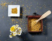 Photo composed of a square bowl of white ceramic, a wooden box full of pollen grains of bees and a bunch of daisies, on a slate. Board, top view royalty free stock image