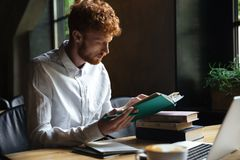 Photo of concentrated readhead bearded student, preparing for un Royalty Free Stock Photo