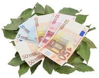 Photo conceptuelle - argent se reposant sur des lauriers Photographie stock libre de droits
