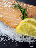 Cooked salmon. Photo of a cooked salmon steak with rosemary and lemon slices on a bed of sea salt Royalty Free Stock Photo