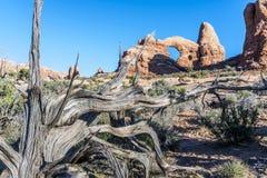 Photo courante de formation de roche rouge, stationnement national de voûtes Photo libre de droits