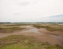 Photo courante - les appartements de boue ne coulent au bord de côte de côté de mer aucune personne Image stock