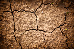 Photo cracked earth  in a dry terrain. The land is cracked due the lack of water Stock Photography