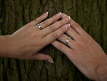 Photo of crossed hands of newlyweds with wedding rings laid on a bark Royalty Free Stock Photo