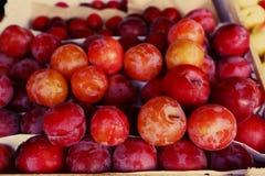 Photo crue mûre rouge de fond de prunes images stock