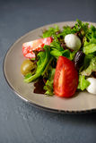 Photo cultivée de salade fraîche de vitamine de ressort Photographie stock libre de droits