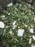 This is the photo of cuted radish leaves . royalty free stock images