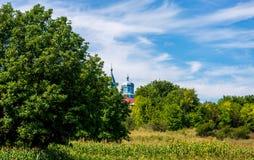 Photo d'église bleue entre les arbres verts Photo stock