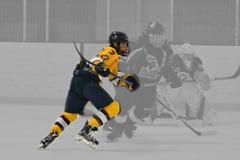 Photo d'action d'hockey image libre de droits