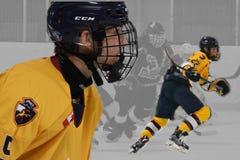 Photo d'action d'hockey photos libres de droits